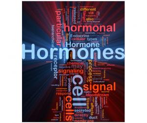 Reposição Hormonal Natural na Menopausa