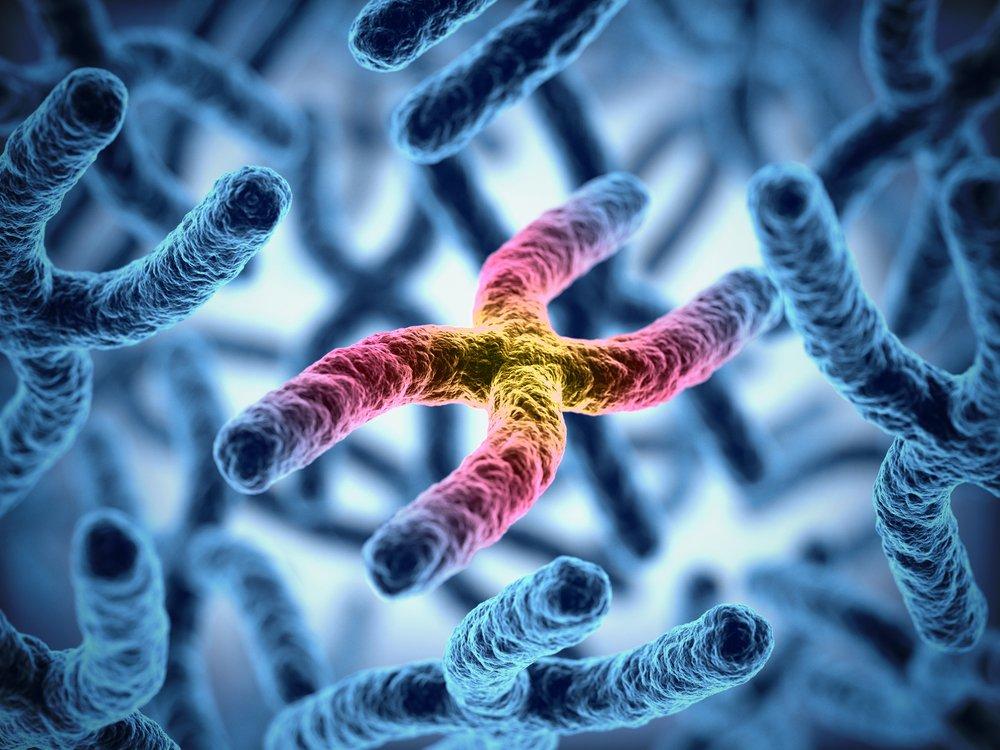 telômeros, antienvelhecimento