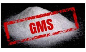 glutamato monossódico GMS
