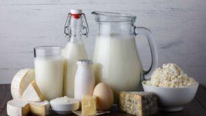 leite e laticínios